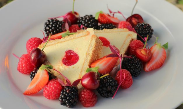 Elsie Smit's No Bake Cheesecake